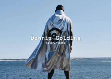 Dennis Golding: Site/Insight