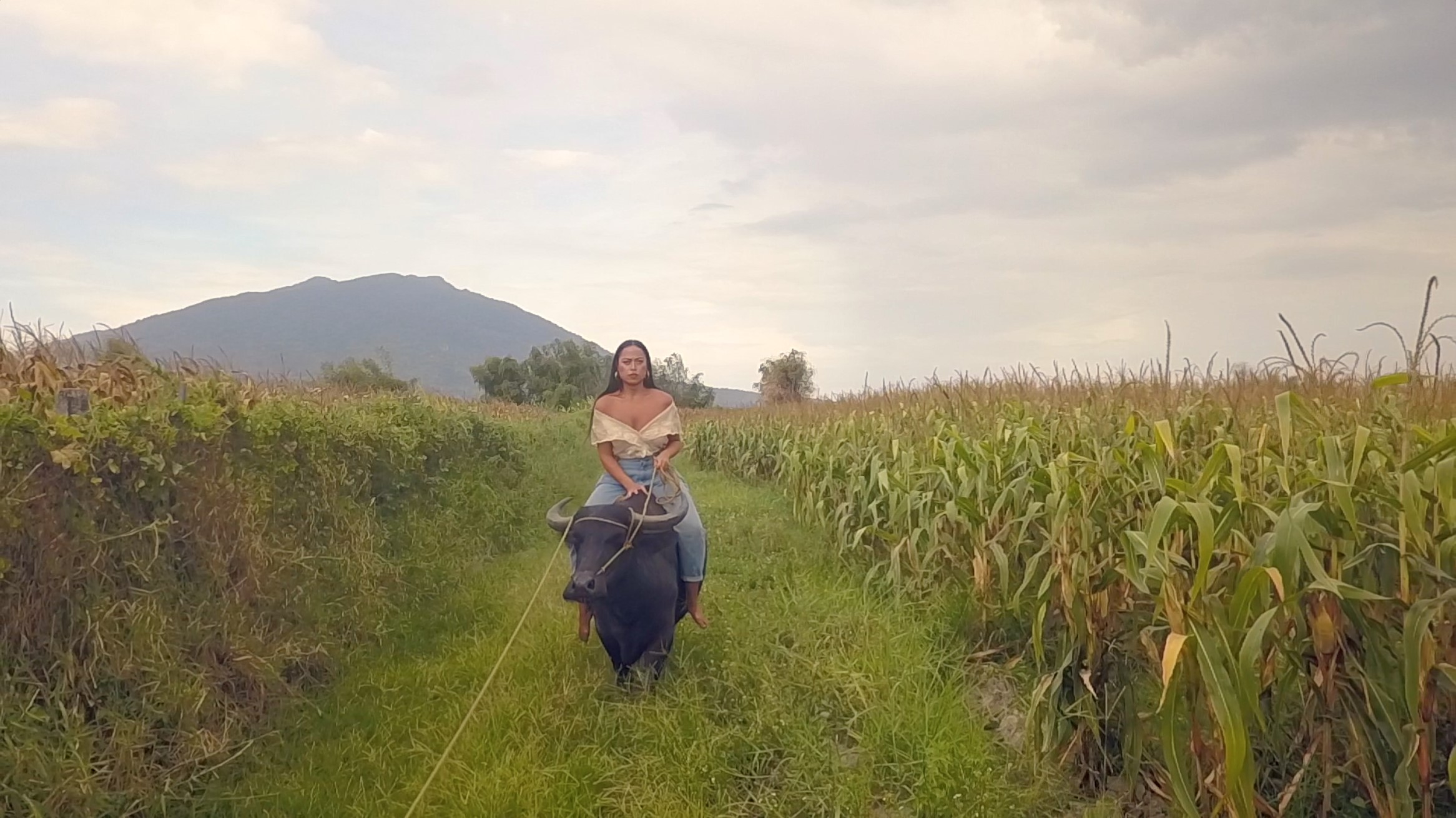Caroline Garcia Queen of the Carabao 2018 two-channel video, sound. Courtesy of the artist.