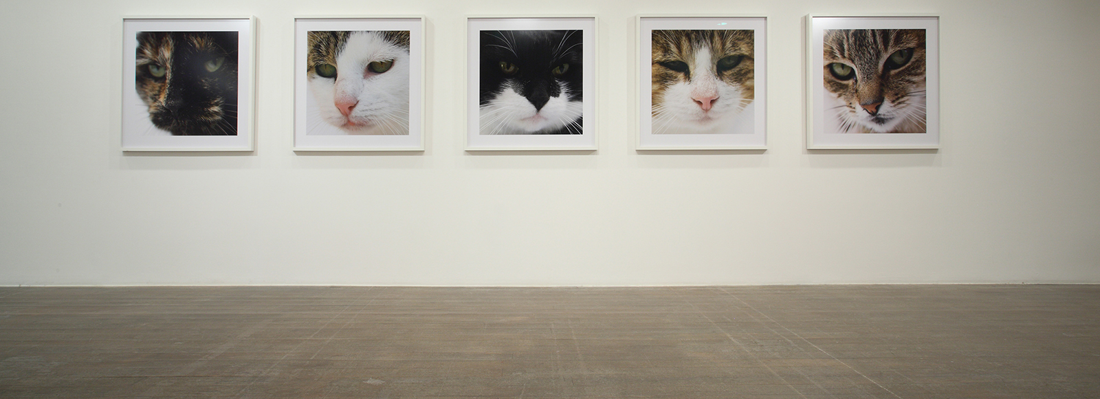 Su-Mei Tse, In collaboration with Jean-Lou Majerus, Son pour Insomniaques (Sound for Insomniacs), 2007, five framed photographs, each 104 x 104 cm; two seats with embedded MP3 players. Courtesy the artist and Peter Blum Gallery, New York