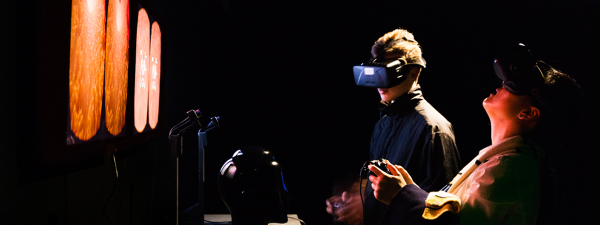 Dr John McGhee Inside-Topologies of Stroke 2015, Occulus Rift DK2 headset and clinical Magentic Resonance Imaging and Computing Tomography data. Photo by silversalt.