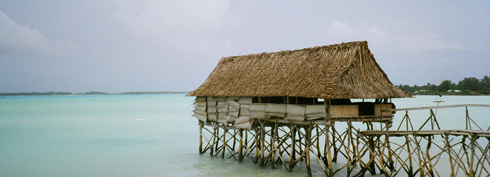 Image taken by Bachelor of Design / Media student Martina Calvi on the UNSW Island Innovation Lab trip
