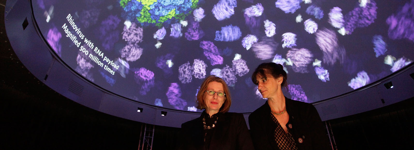 EPIC's research leaders Professors Sarah Kenderdine (left) and Lindy Rae in DomeLab beneath a visualisation of Rhinovirus with RNA payload magnified 500 million times. Animation showing in DomeLab by Drew Berry. Photo: Andy Baker