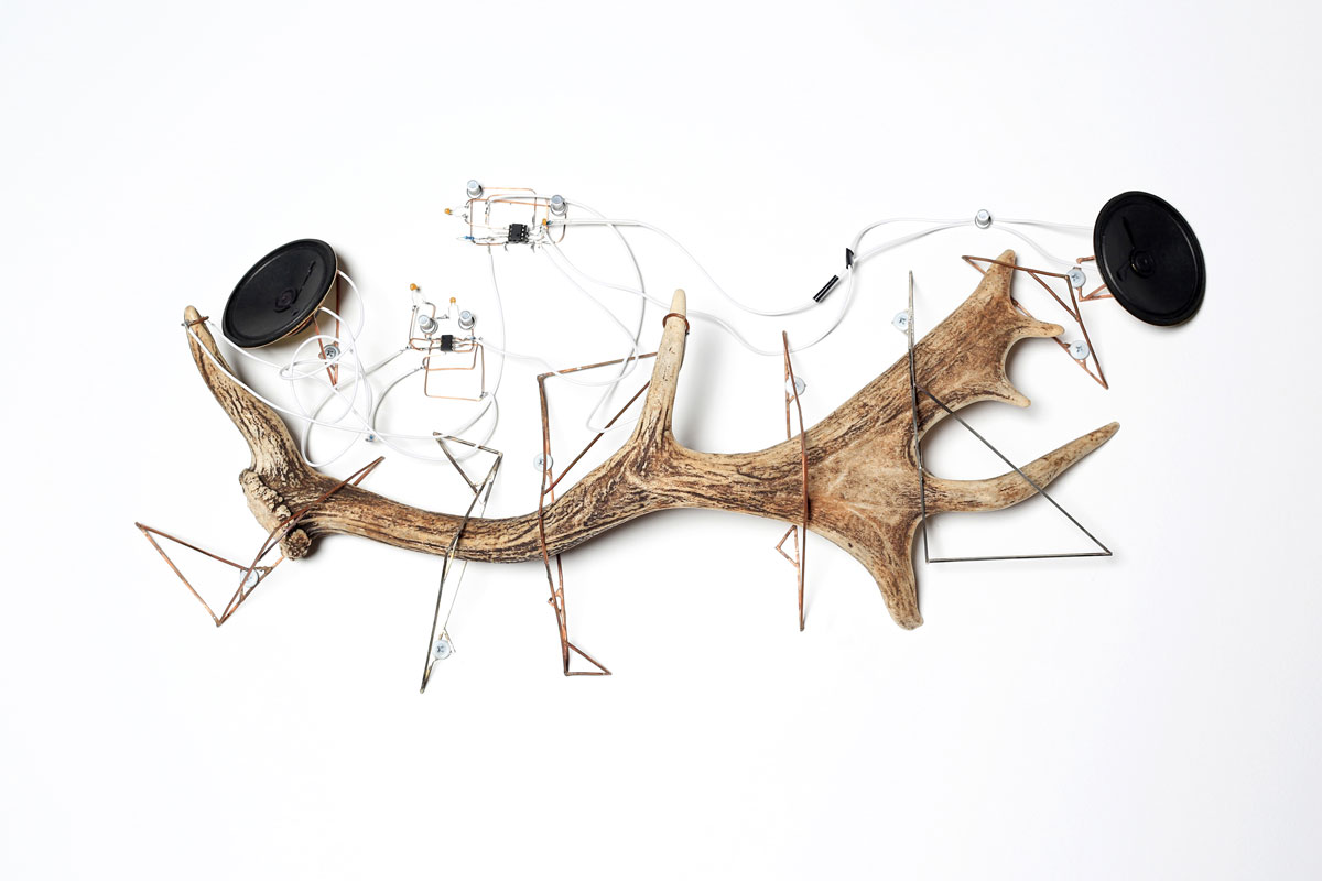 Vincent & Vaughan O'Connor Millionth Acre (production image, detail)  2015 laser etched and oxidised steel plates, pine saplings (pinus radiata), copper wire stock, nickel silver wire stock, amplifier components, speaker cones, custom electronics etc.